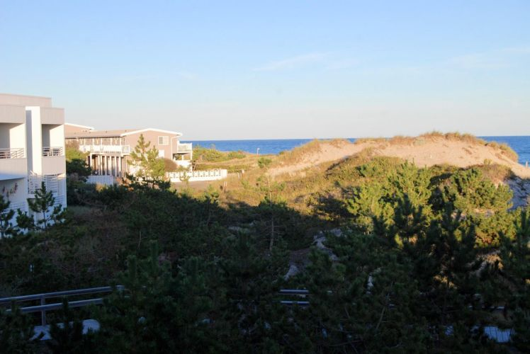 dunes and motel