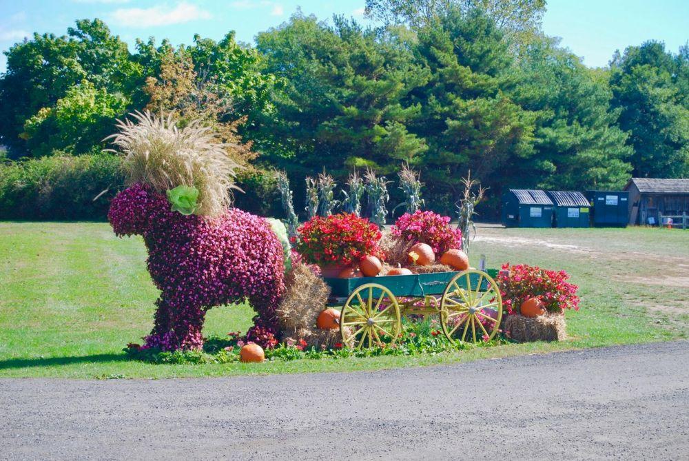 flower animal and wagon