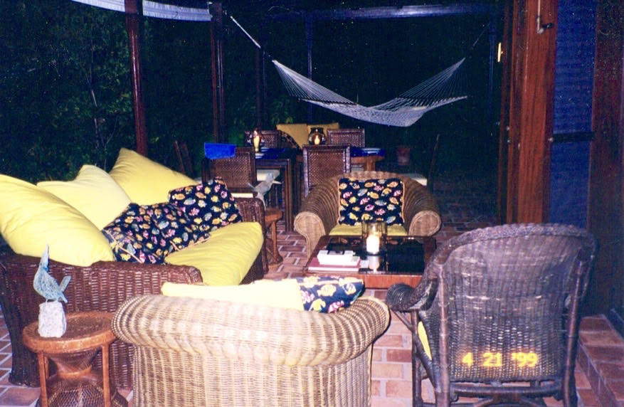 lizard lounge st b