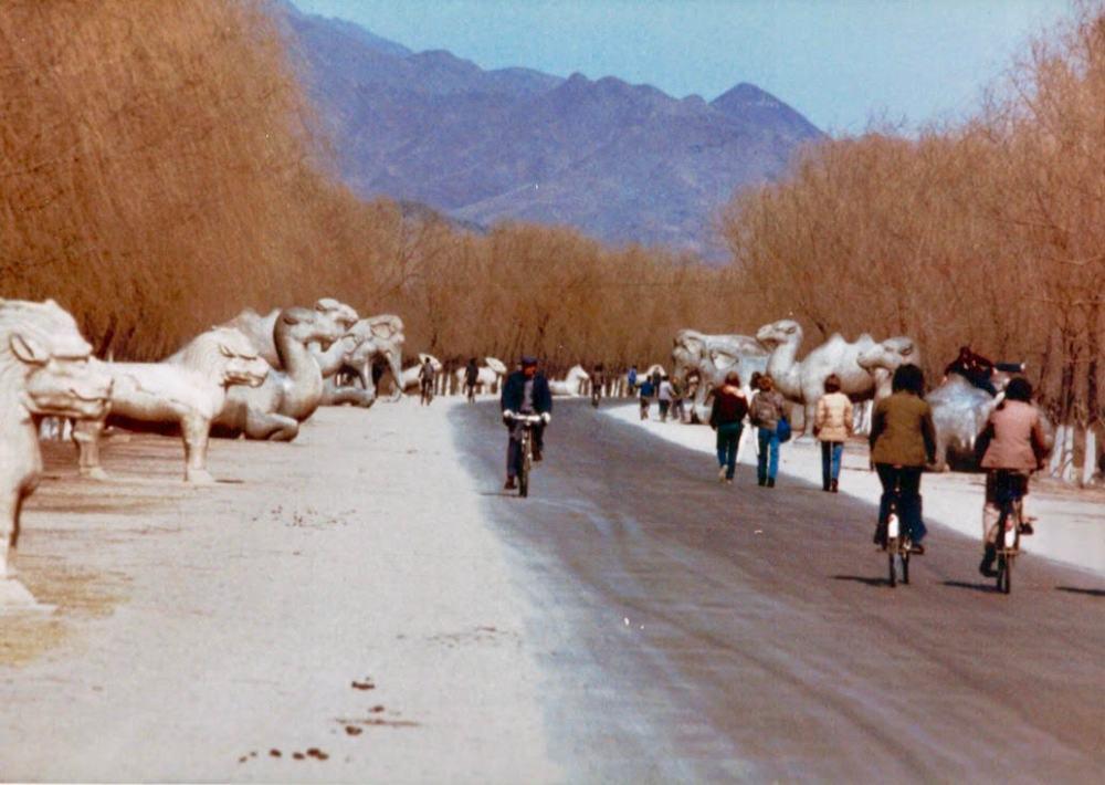 beijing stone animals