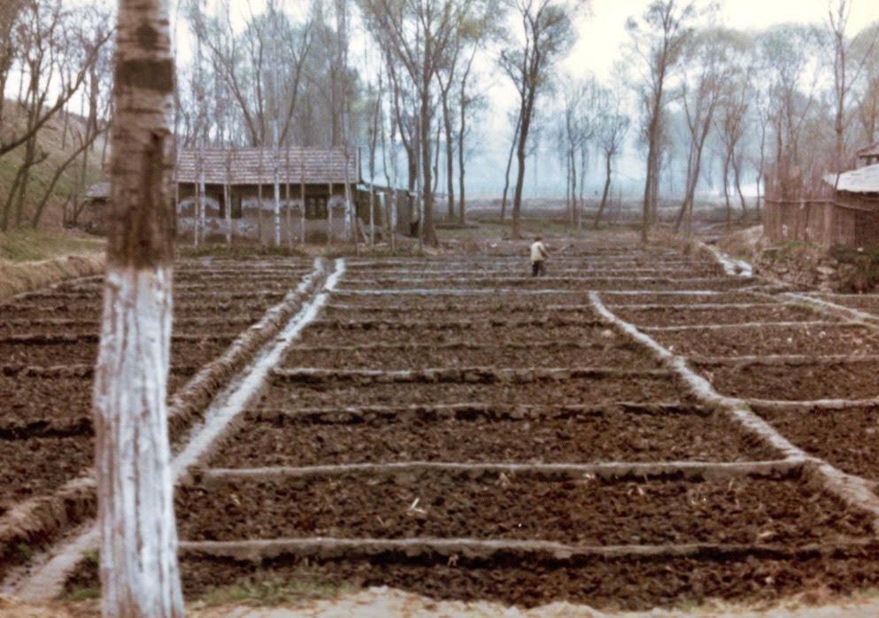 farm outside beijing